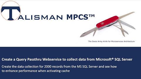 Create a Query Passthru Webservice | Demo | Talisman MPCS™