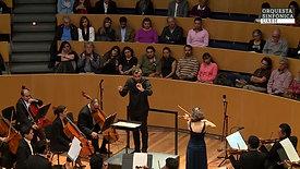 Jean Sibelius: Violin Concerto