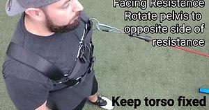 Resisted Pelvic Rotation