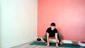 Hatha Yoga Traditionnel - Joie de vivre