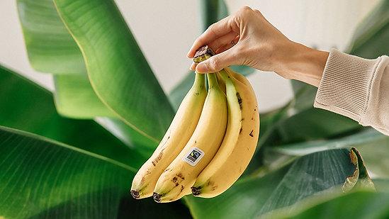 November 2021 Fairtrade