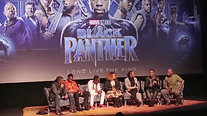 Black Panther Panel Lisa Cunningham