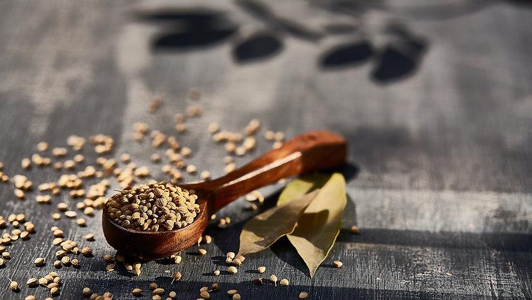 SeedMarathon Herbs