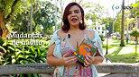 [PENSE VERDE] O que é sustentabilidade 4.0 - Magda Helena Maia