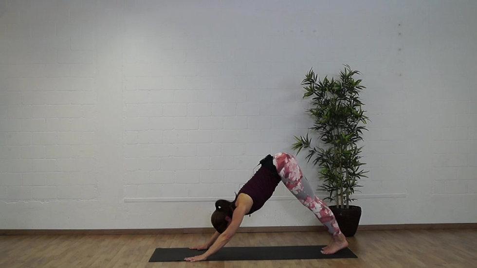 Woche 9 - Lauf-Programm mit Pilates & Slings Myofasziales Training®