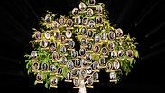 Tree of Ukrainian medicine by Mariia Yasynska & Vj Yarkus