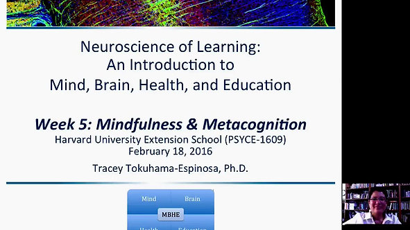 Mindfulness and Metacognition