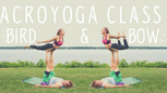 Acroyoga | Bird and Bow L-Basing Workshop