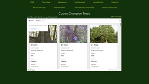 Champion Trees Gallery Views