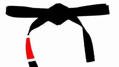 Black Belt Combo Set Requirements