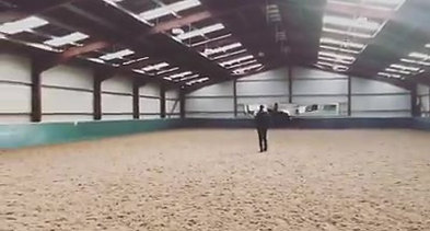 A-little-snippet-of-Frank-earlier-in-the-Robyn-Smith-Dressage