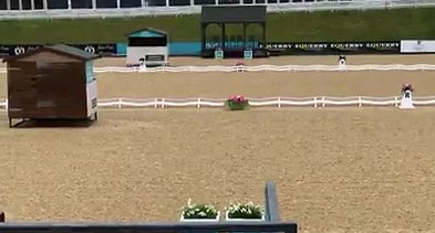 Some-of-our-trot-work-from-yesterdays-Robyn-Smith-Dressage