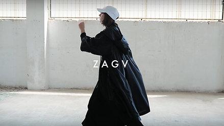 ZAGV campaign