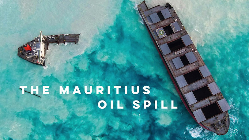 The Mauritius oil spill