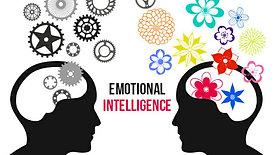EQ vs IQ