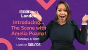 Introducing Amelia Poamz on The Scene