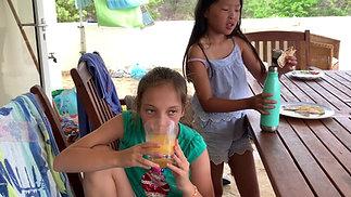 Bonaire Botanical Gardens: A Child's Review