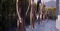 _tstdanceproductions_HKM#Hunkemoller#Doutzen# Doutzenstories#swimwear#
