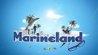 Billboard Marineland - Kohlanta