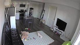 Pet monitoring camera