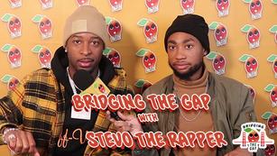 Bridging the Gap w/ Stevotherapper