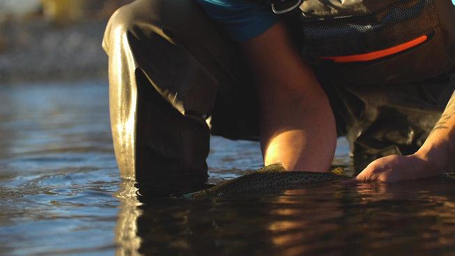 Fishing Calgary