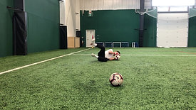 Stationary Ball Low Dive