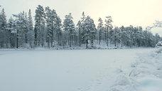 L'arrivée de l'hiver en Finlande