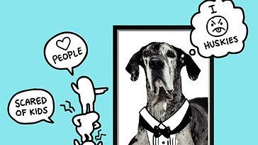 Bubby Dog Academy Intro Video