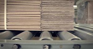 Roller Conveyor Cardboard Boxes