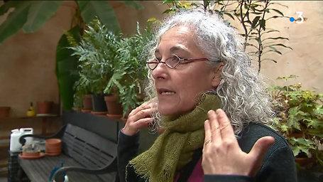France TV info : La musique des plantes à Gaujacq