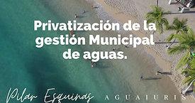 Privatización de la gestión Municipal de aguas.