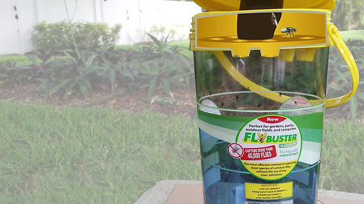 Fly Buster Fly Trap