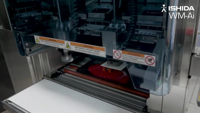 WM-Ai Automatic Wrapper with Infeed Conveyor