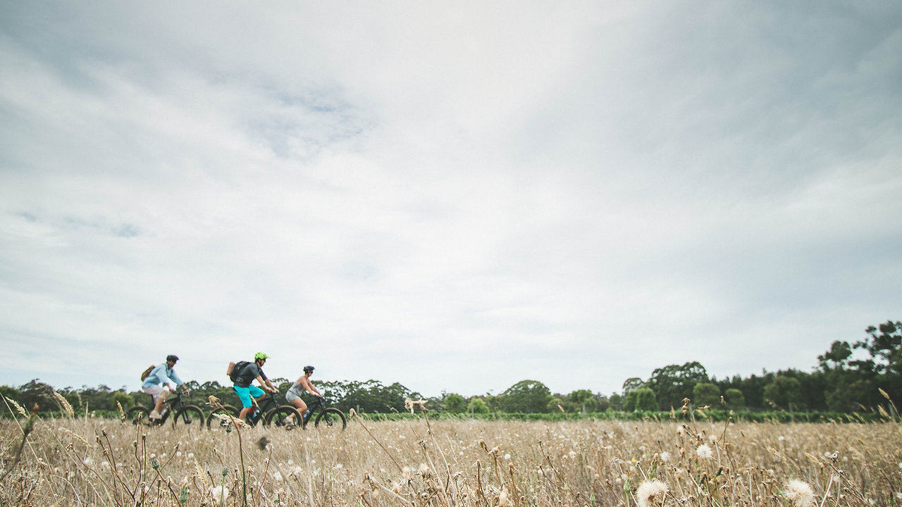 Electric Bike Tours in the Heart of Margaret River