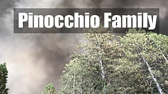 Pinocchio Family Fundraiser: Survivors of the California Butte County Camp Fire