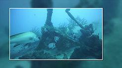 Aoredise Shore Dive March 2018
