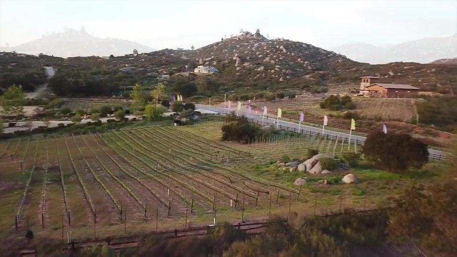 Trevi Hills Home