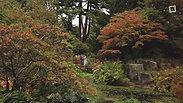 Reena & Radhesh | Botanical Gardens