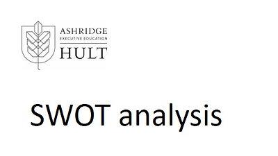 3.c.iii. Swot analysis