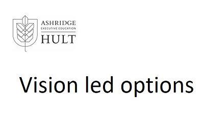 3.d.i. Vision led options