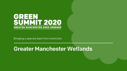 Greater Manchester Wetlands