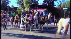 Scripps Miramar Saddlebred Horses