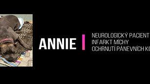 Annie - Infarkt míchy