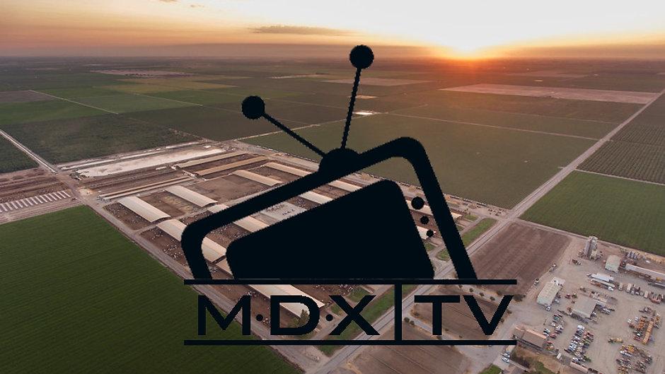 MDX | TV
