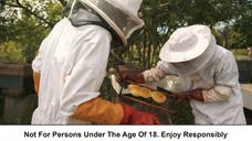 Chivas Venture_Making Honey