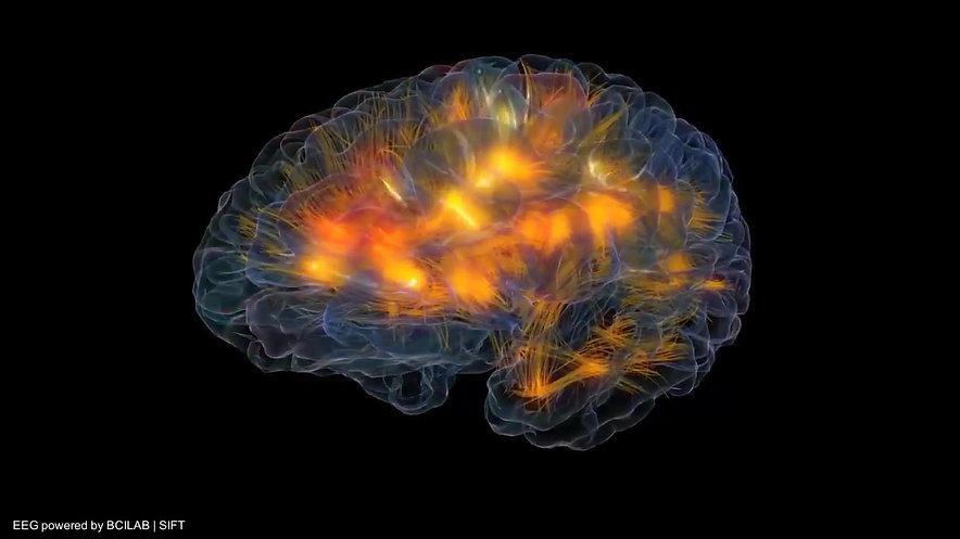 Glass Brain Flythrough