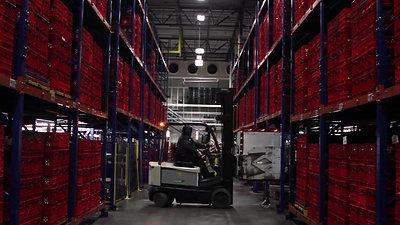 Turkey Hill Dairy - Warehouse - Seasonal