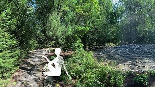 Take 10 to Zen: Virtual Labyrinth Walk
