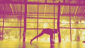 Anahata Yoga Shala - Koh Phangan Good Morning from the Jungle